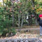 群馬県上野村にある穴場でキャンプ&軽井沢でショッピング!