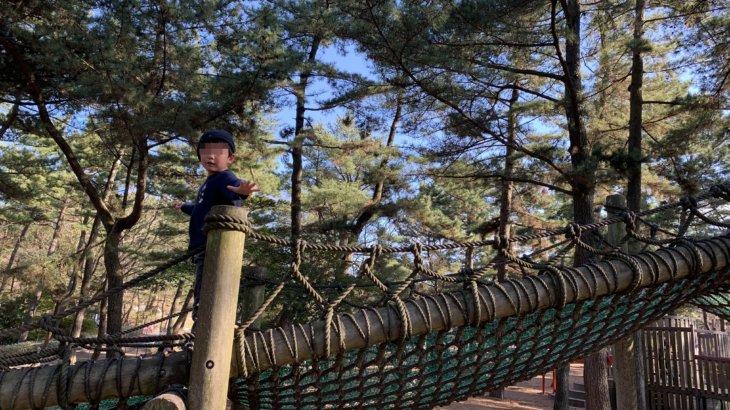茨城県北部への車旅!袋田の滝〜国営ひたち海浜公園で外遊び編